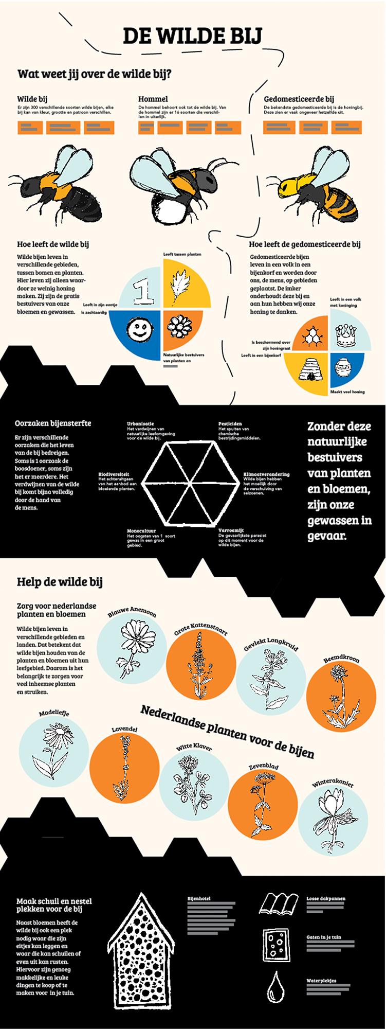 Infographic Poster De Wilde Bij
